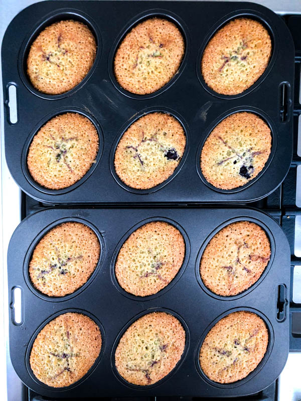 Top view of Pistachio Blueberry Friands in the Friand tins straight out of the oven.