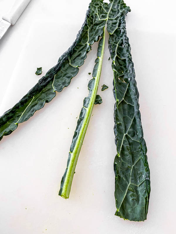 A leaf of kale showing the thick stem cut out of it.