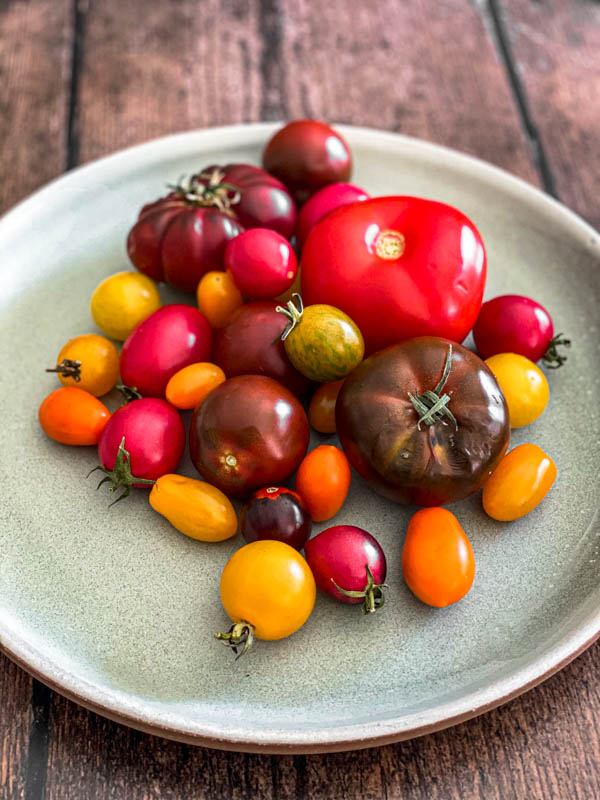 Different sized heirloom tomatoes on a green plate.