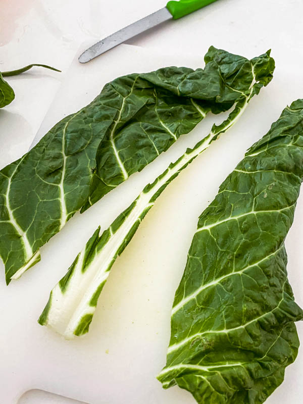 A leaf of silverbeet with the centre white part cut out and removed.